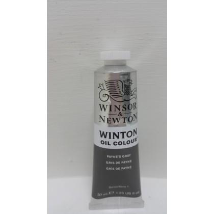 Winsor & Newton, Winton Oil Colour Payne's Gray 37ml